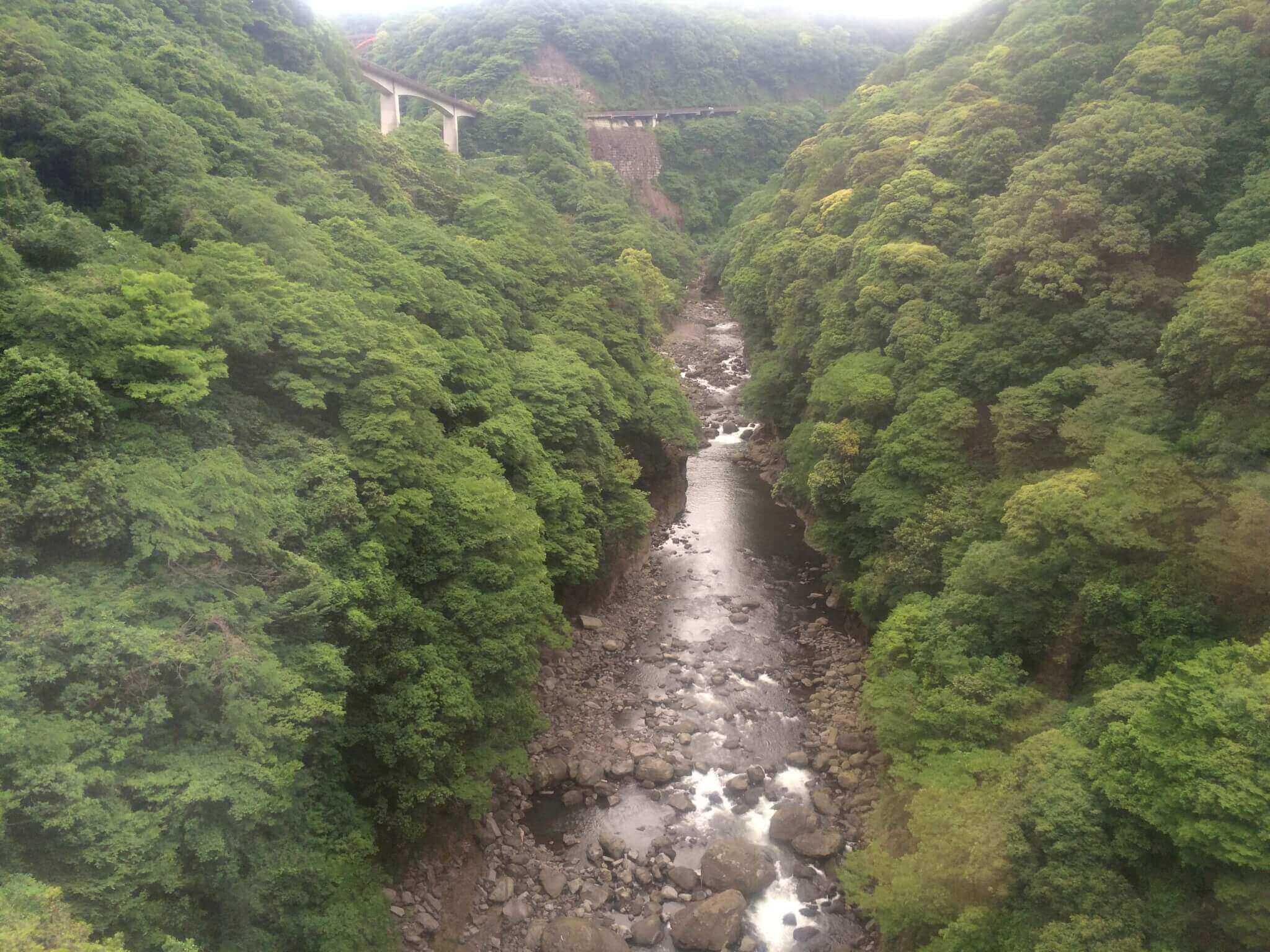 南阿蘇鉄道から見える景色