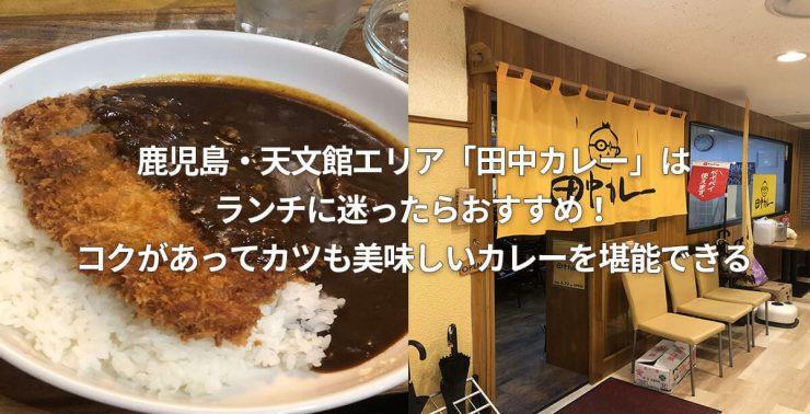 鹿児島・天文館エリア「田中カレー」はランチに迷ったらおすすめ!コクがあってカツも美味しいカレーを堪能できる