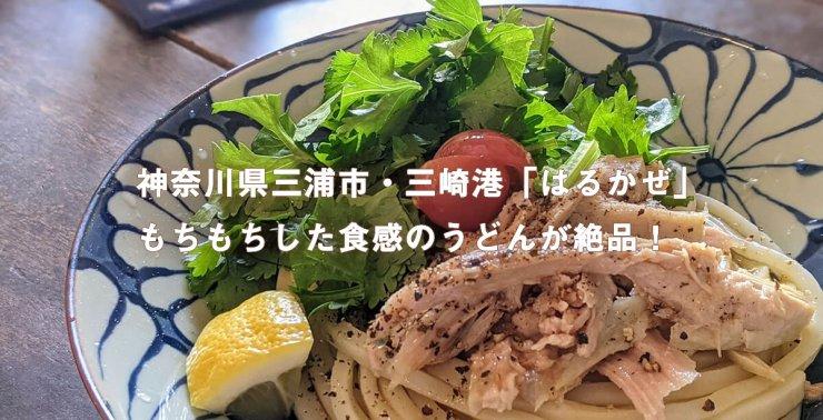 神奈川県三浦市・三崎港「はるかぜ」。もちもちした食感のうどんが絶品!
