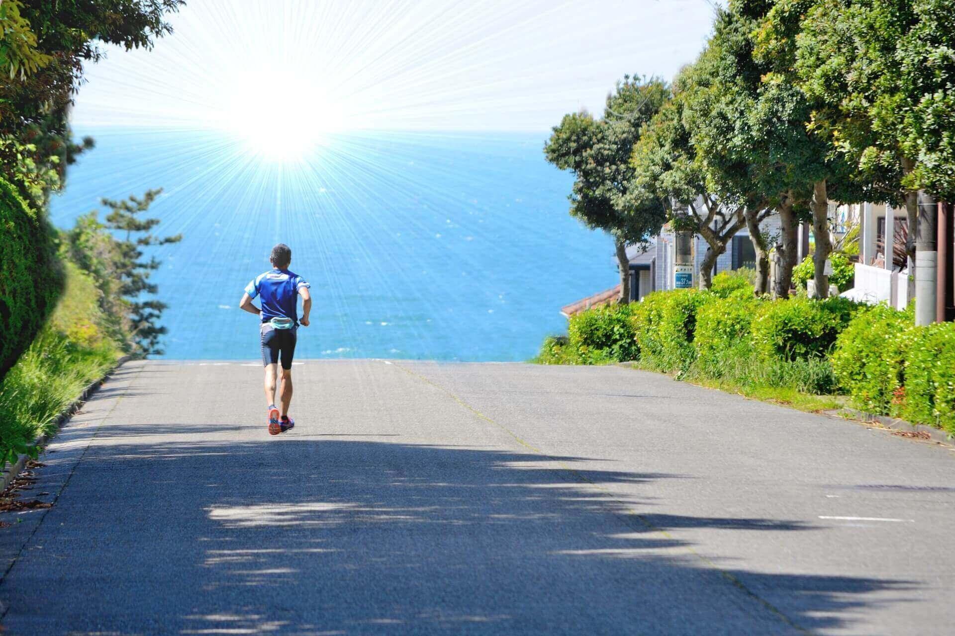 毎日走るようにブログを更新