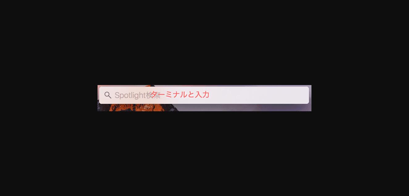 spotlight入力画面