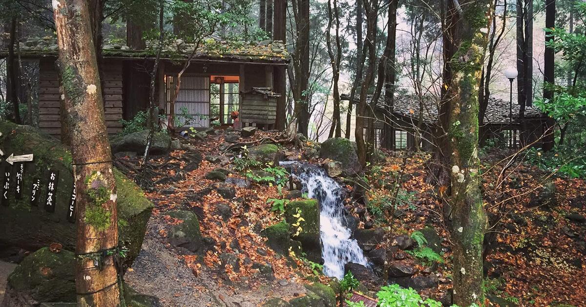 鳥取智頭町・みたき園は風情ある和風庭園がオシャレ!デートにも最適な山菜料理店