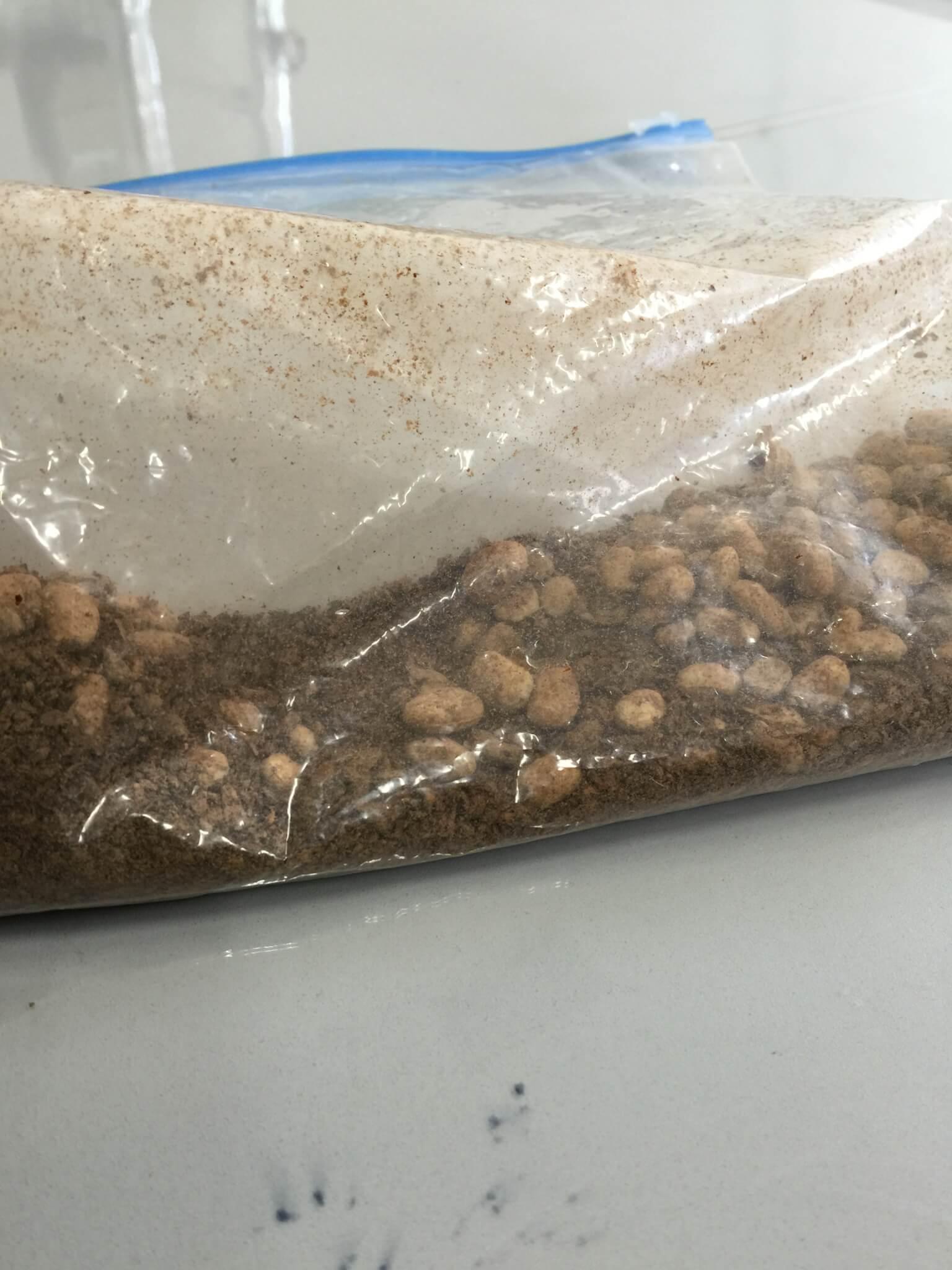 大豆と小麦で作られた麹