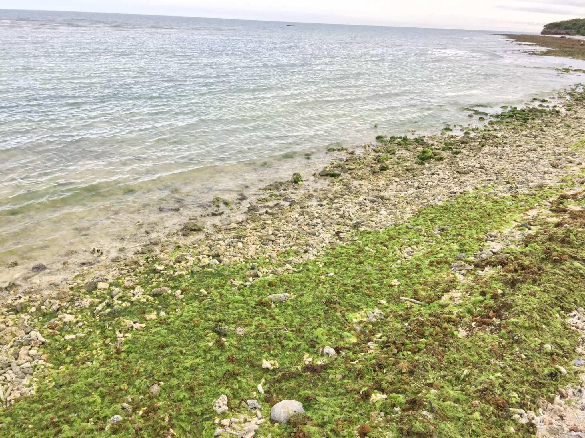 竹富島星のやのそばにあるアイヤル浜の海
