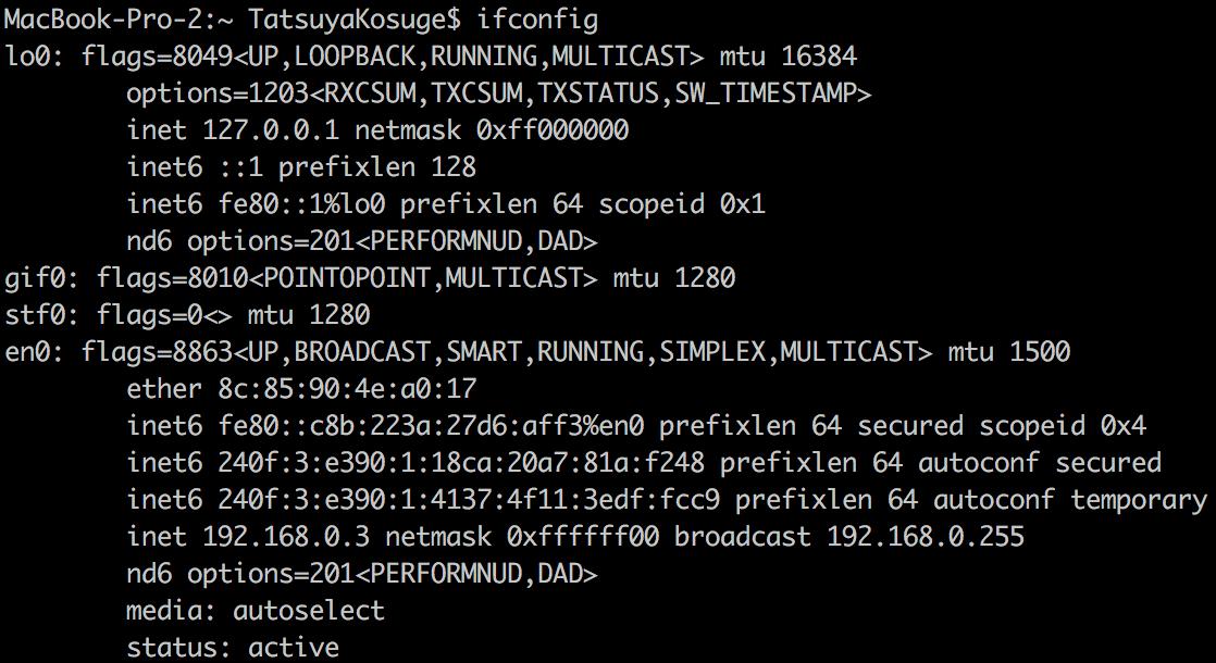 ターミナルでinconfigコマンドを立ち上げる画面